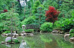 Illinois top destinations - Anderson japanese gardens rockford illinois ...